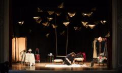 Come Farfalle...quando la vita diventa un volo